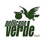 pellicano-verde-bitwo-assistenza